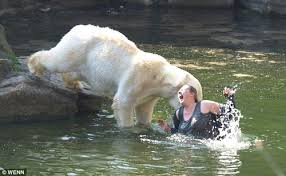 Maybe swimming with Polar bears, wasn't a good idea.